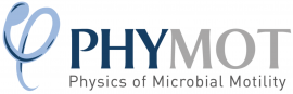 Image of (593885) EUROPE: 15 PhD positions in the MSCA-ITN project PHYMOT (physics of cell motility)